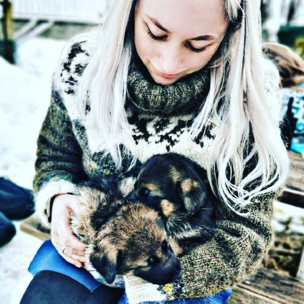 Sisve_Knitting